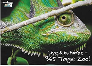 Live & in Farbe. 365 Tage Zoo.