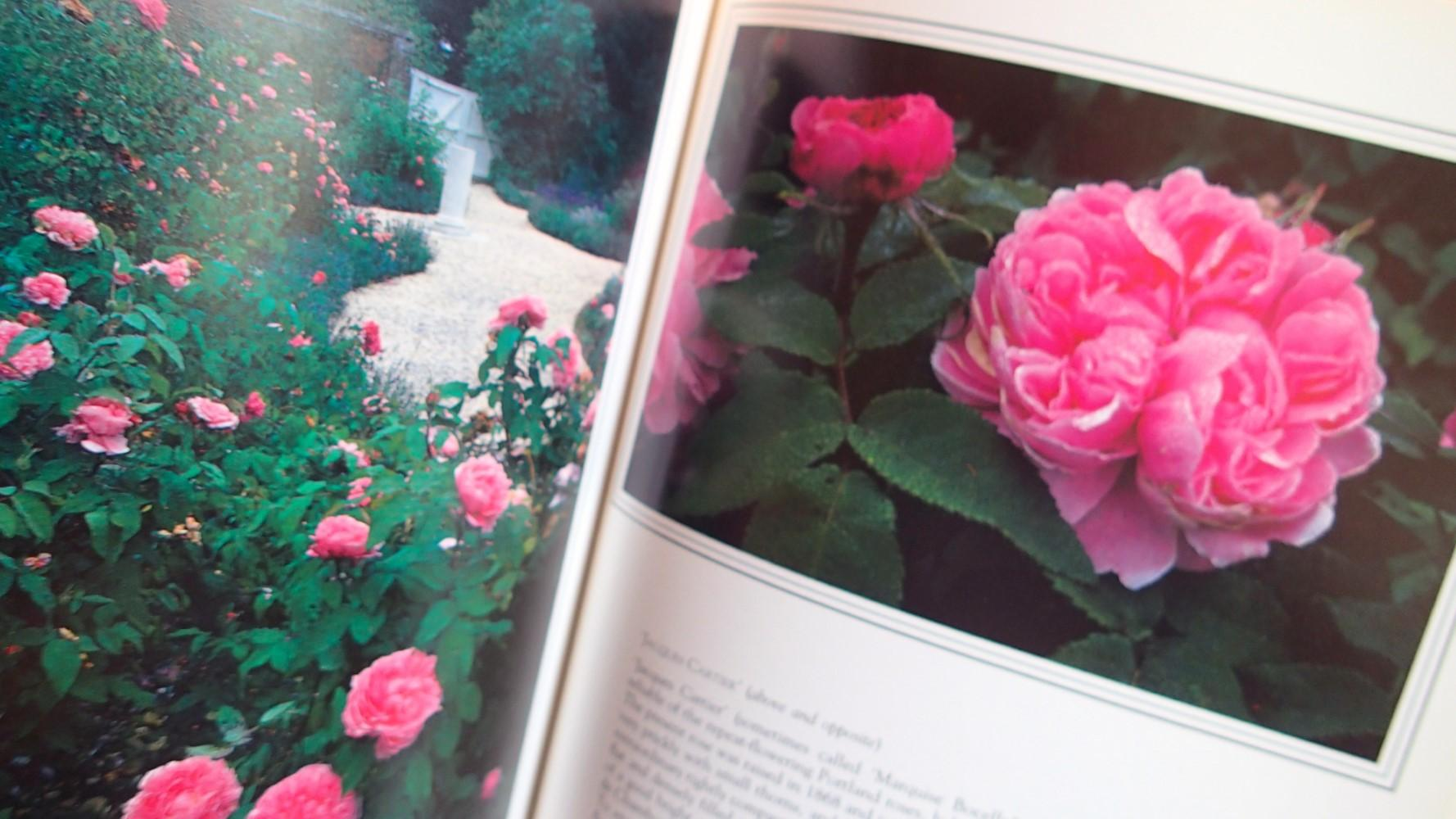 The Art Of Gardening With Roses By Graham Stuart Thomas Henry