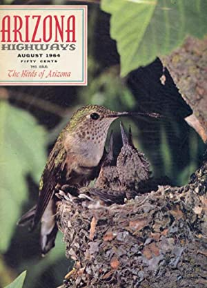 ARIZONA HIGHWAYS : BIRDS OF ARIZONA, August 1964, Volume XL (40), No 8