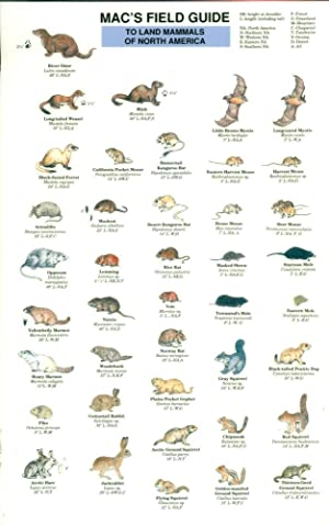MAC'S FIELD GUIDE TO LAND MAMMALS OF NORTH AMERICA (Mac's Field Guides)