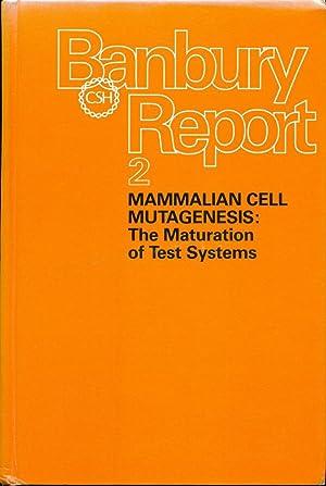 BANBURY REPORT; 2) MAMMALIAN CELL MUTAGENESIS: The: Hsie, Abraham W.;