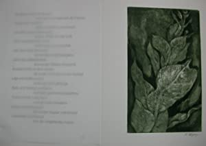 Die Metamorphose der Pflanzen. Mit Originalradierungen von Ernst Wolfhagen: Goethe, Johann Wolfgang...