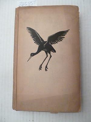 Der schwarze Storch: Molzahn, Ilse