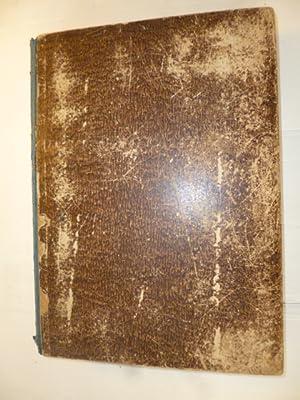 Das Buch der Welt. 1872. Einunddreißigster Jahrgang (Nr. 1 bis 52) Illustrirtes Volksblatt. (...