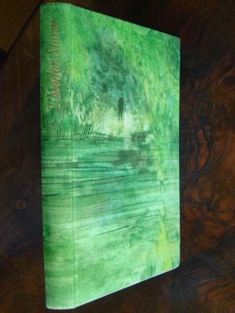 7 Novellen in einem Buch: Immensee. Beim: Storm, Theodor.