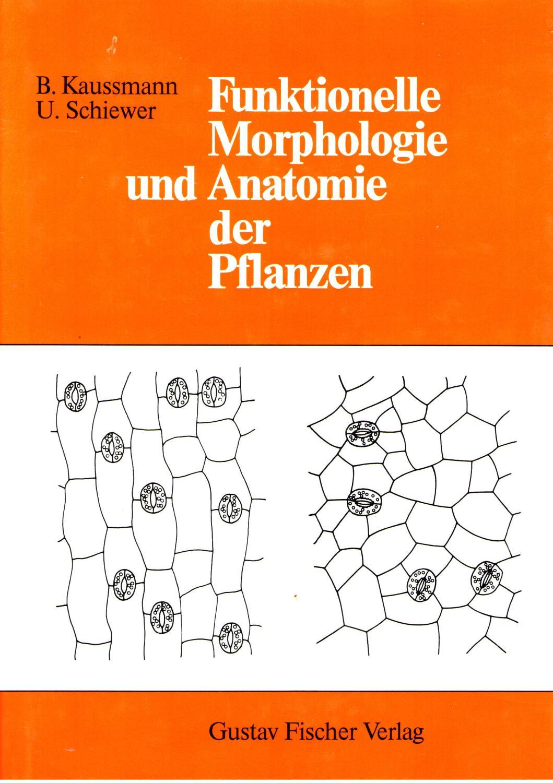 Funktionelle Morphologie und Anatomie der Pflanzen by Kaussmann ...