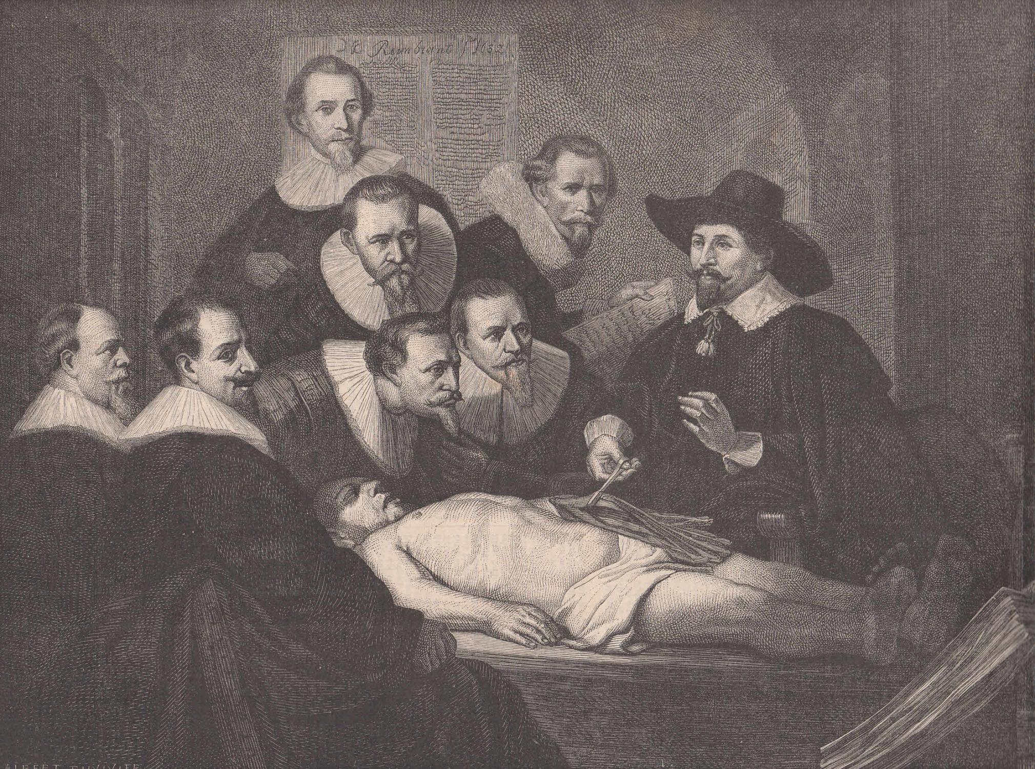 anatomische vorlesung - ZVAB