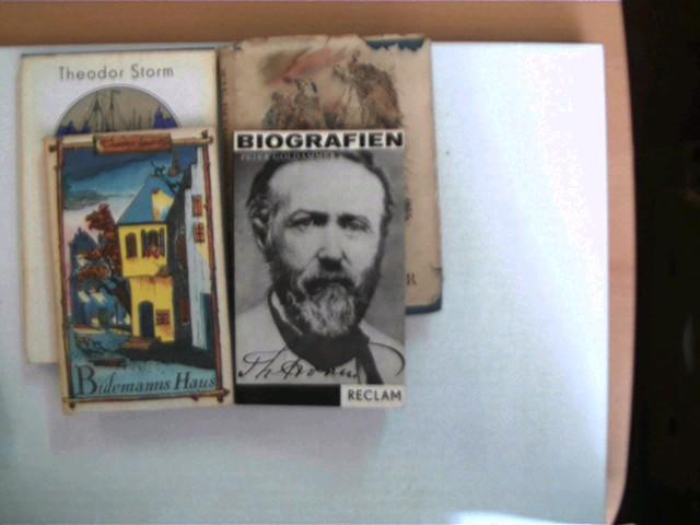 4 Bücher des deutschen Schriftstellers Theodor Storm,: Storm, Theodor: