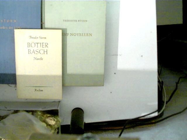 3 Bücher von Theodor Storm: 1. Bötjer: Storm, Theodor: