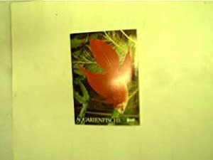 Aquarienfische 1, Sammelmappe verschiedener Karten mit Fischen,: Autorenkollektiv: