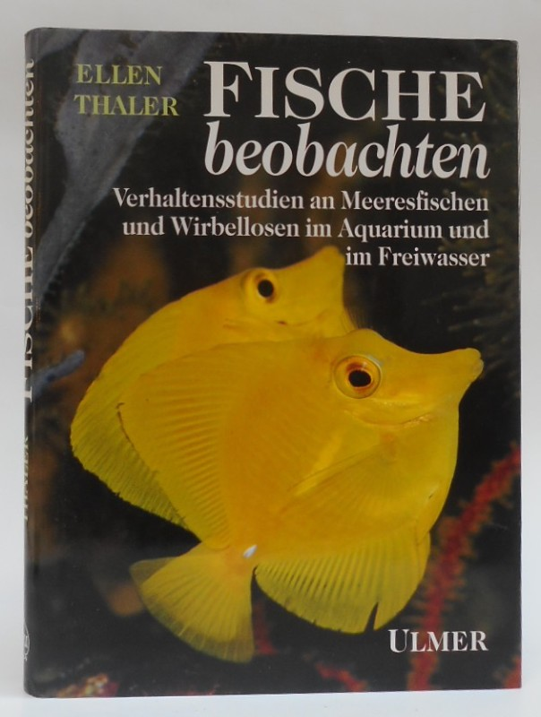 Große Fische frei datieren