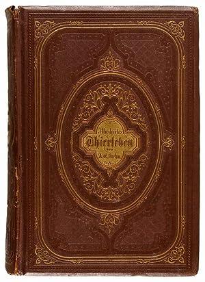 Illustrirtes Thierleben. Eine allgemeine Kunde des Thierreichs.: Alfred Edmund Brehm