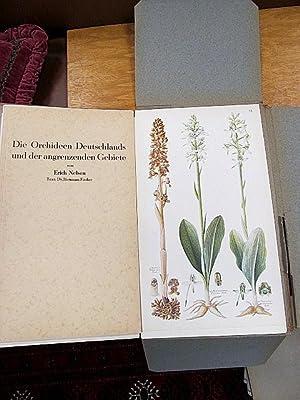 Die Orchideen Deutschlands und der angrenzenden Gebiete. Nach Aquarellen von Erich Nelson. Text von...