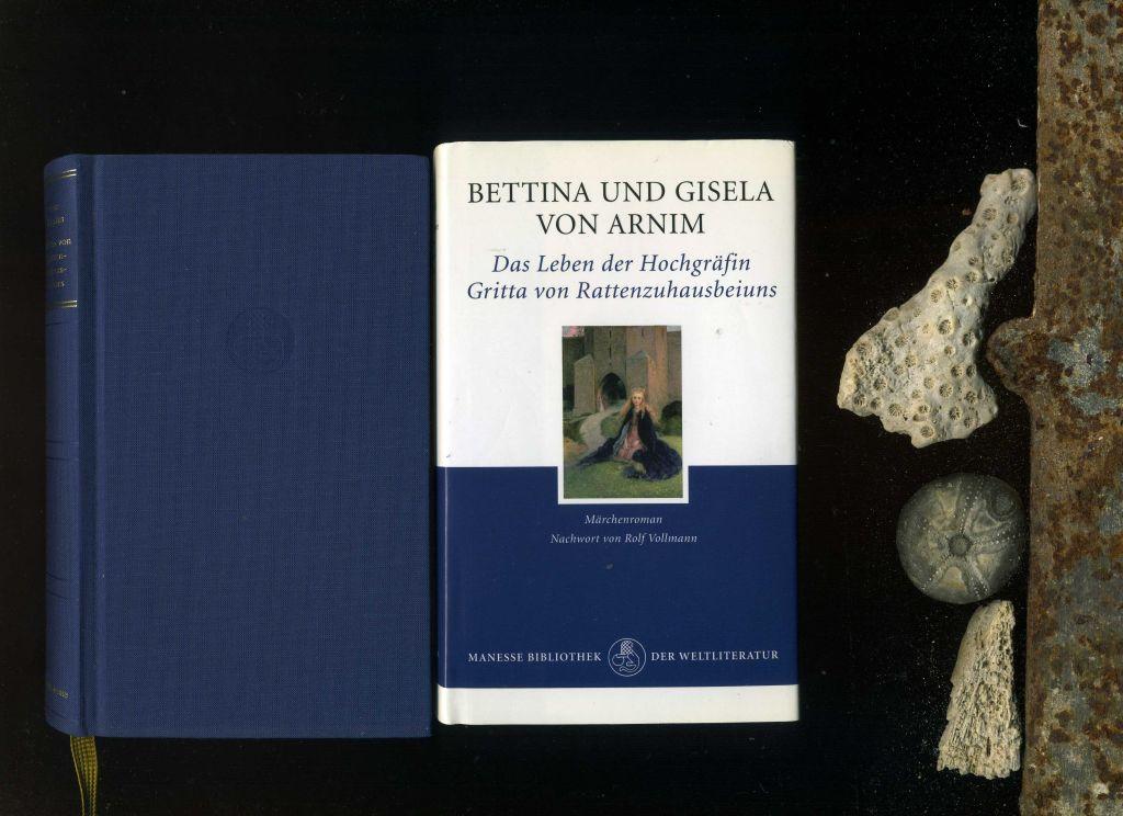 Das Leben der Hochgräfin Gritta von Rattenzuhausbeiuns: Märchenroman von Bettina von Arnim und Gisela von Arnim. - Bettina von Arnim und Gisela von Arnim