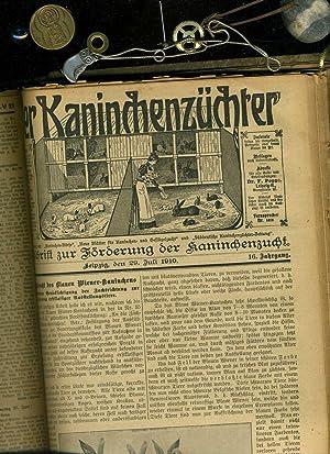 Der Kaninchenzüchter : älteste deutsche Fachzeitschrift für Kaninchenzucht. 16 ...