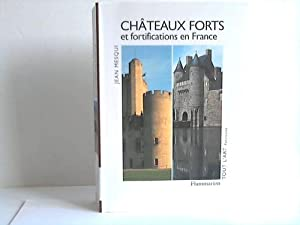 Chateaux Forts et fortifications en France: Mesqui, Jean