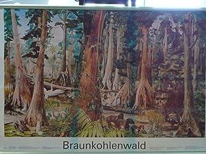 Hrsg. von der Akademie der pädagogischen Wissenschaften: Braunkohlenwald