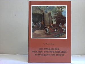 Eisensteingruben, Hochofen- und Hammerhütten im Bodegebiet des Harzes: Schwerdtfeger, Kurt