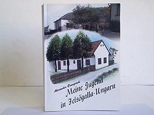 Meine Jugend in Felsögalla-Ungarn: Csongradi, Alexander