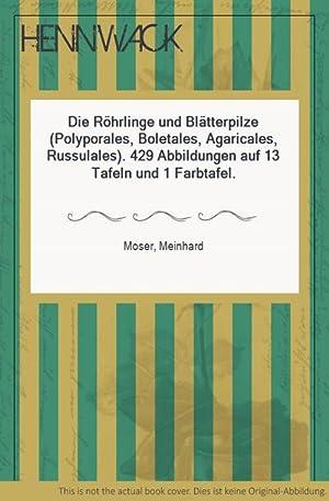 Die Röhrlinge und Blätterpilze (Polyporales, Boletales, Agaricales,: Moser, Meinhard: