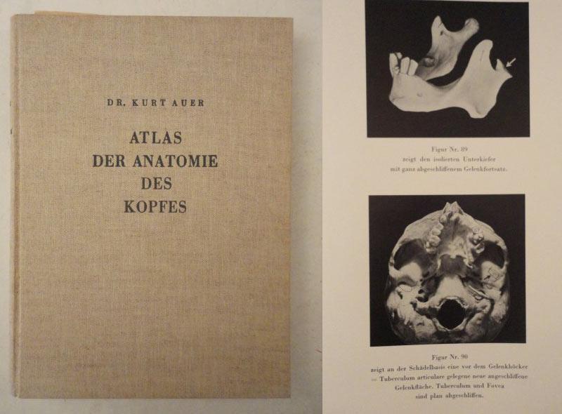 Atlas der Anatomie des Kopfes, mit einem Anhang über Brust- und ...