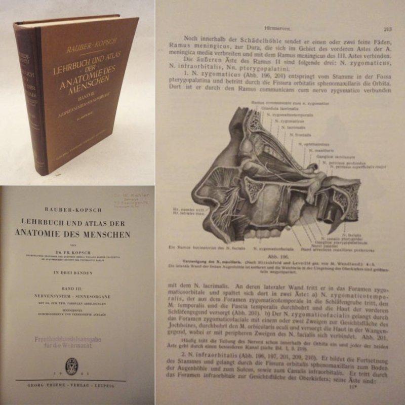 lehrbuch atlas anatomie menschen anatomie atlas von rauber kopsch - ZVAB