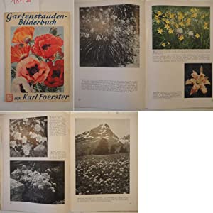 Gartenstauden-Bilderbuch: Foerster, Karl: