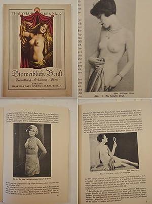 Die weibliche Brust. Gemeinverständliche Darstellung des gesetzmäßigen ...