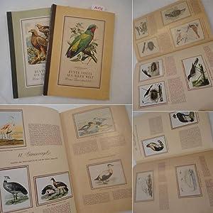 Bunte Vögel aus aller Welt, Teil 1 und 2: Kosmos: