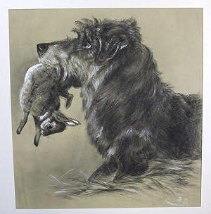 Seitliches Porträt eines Jagdhundes mit einem Hasen: Jagdhund