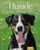 Hunde. Rassen, Ausbildung, Haltung. Mit Hunderassen- und Sachregister.: Bielfeld, Horst: