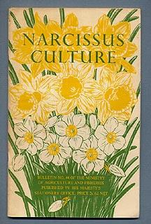 NARCISSUS CULTURE. Bulletin No. 44