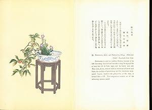Selected Flower Arrangements of The Ohara School: Moribana & Heikwa: