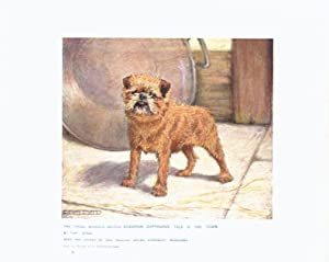 PRINT: Genuine Edwardian Antique Print - Brussels Griffon: ch, Copthorne Talk of the Towm: Artist: ...