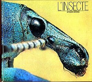 L'insecte: BROSSE Jacques (texte),
