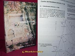 Carte archéologique de la Gaule --------- 37 - INDRE-ET-LOIRE: PROVOST ( Michel )