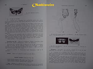 FAUNE DE MADAGASCAR : N° 43, 1 ère & 2ème parties : Insectes Lépidopt&...