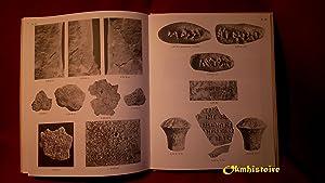 TCHOGA ZANBIL ( Dur-Untash ) --- Tome 3 , Textes élamites et accadiens de Tchoga Zanbil ----...