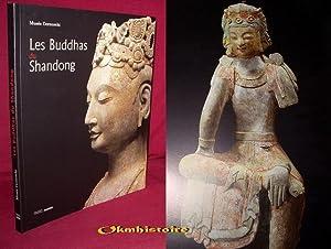Les Buddhas du Shandong: Collectif [ Musée Cernuschi / musée des Arts de l'Asie de la Ville de ...