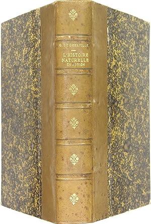 L'histoire naturelle en action - Esquisses de: CHERVILLE Marquis G.