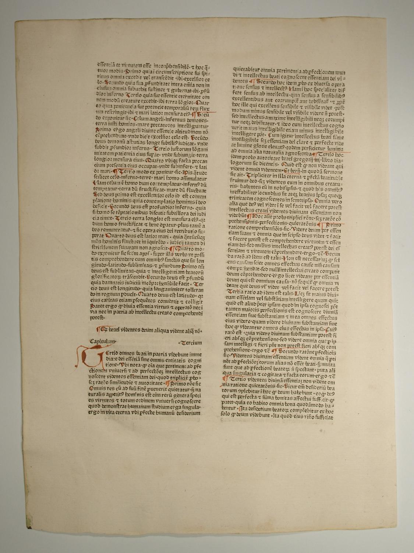 Pantheologia (GWM 36924, H 13014). Cap. Tercium.: Rainerius de Pisis: