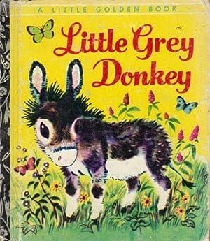 Little Mexican Donkey Boy