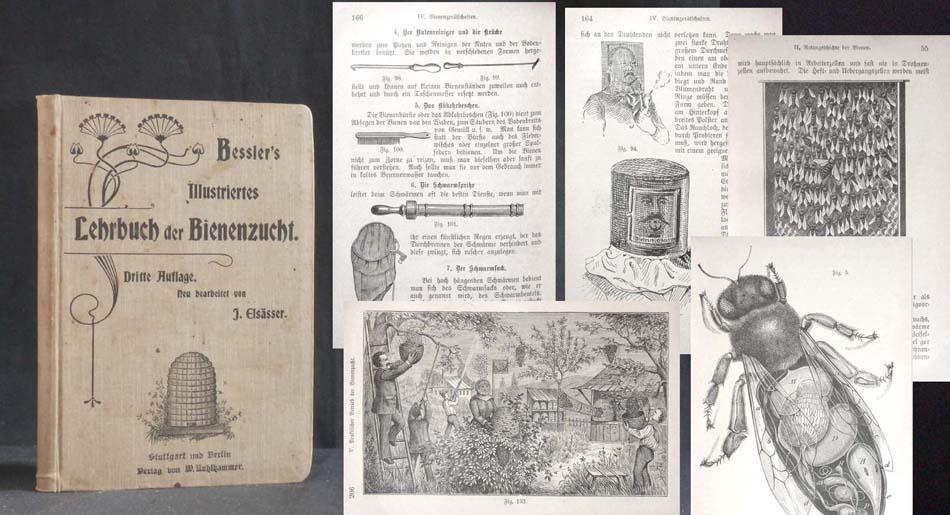 Beßler's illustriertes Lehrbuch der Bienenzucht. Neu bearbeitet von J. Elsäßer.