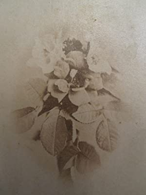 ANTIQUE VICTORIAN FLORAL STILL LIFE LANDSCAPE PHOTOGRAPHER FELICITY OH CDV PHOTO