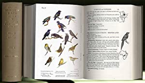 Birds of easternd and north eastern Africa.