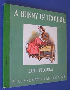 A Bunny in Trouble (Blackberry Farm): Pilgrim, Jane