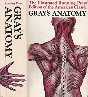 Gray's Anatomy Descriptive and Surgical 1901 Edition: Gray, Henry