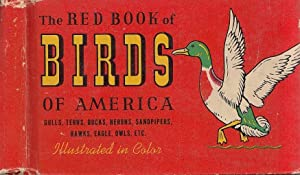 The Red Book Of Birds Of America Gulls, Terns, Herons, Sandpipers, Hawks, Eagle, Owls, Etc.