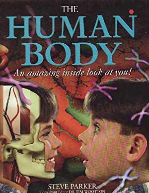 The Human Body An Amazing Inside Look at You