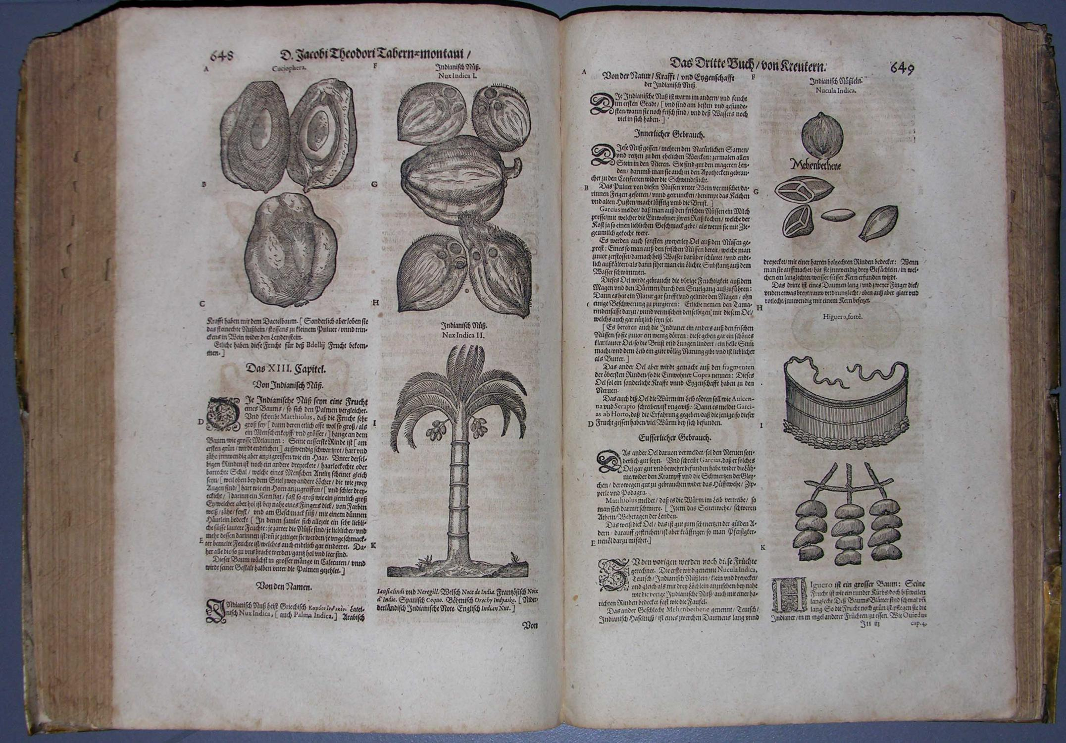 Neuw vollkommentlich Kreuterbuch, Mit schönen und künstlichen: KRÄUTERBUCH - TABERNAEMONTANUS,